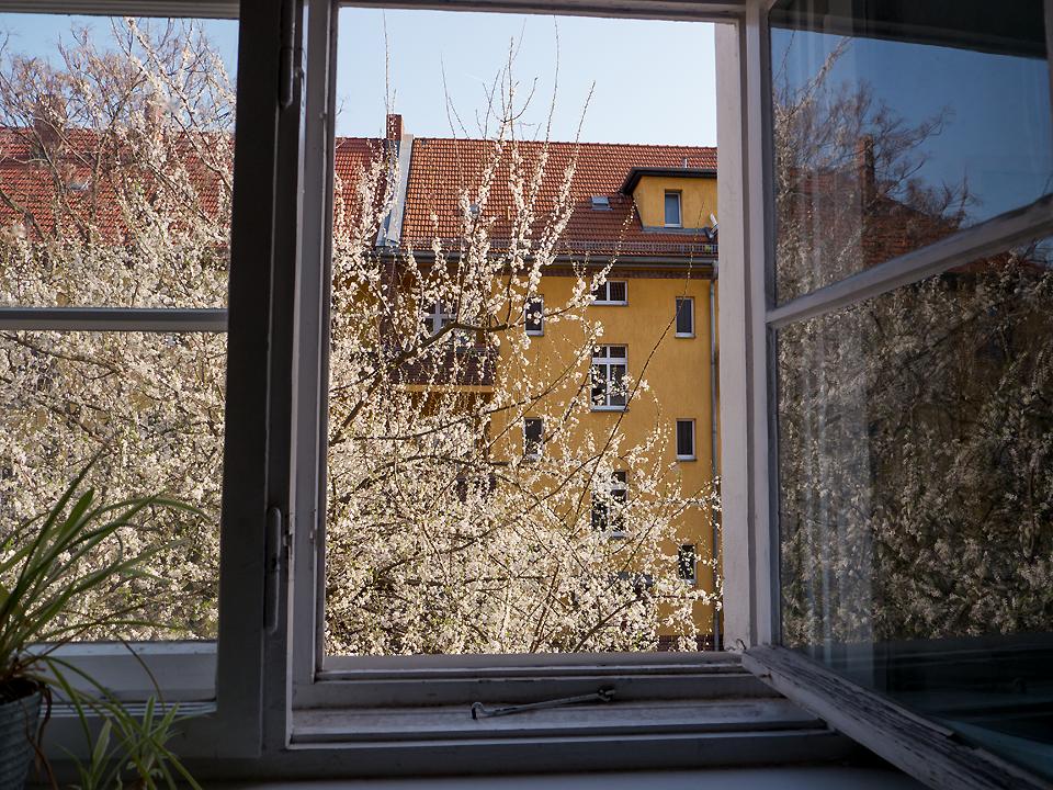 Fr hling vor dem fenster berlin shots for Fenster berlin